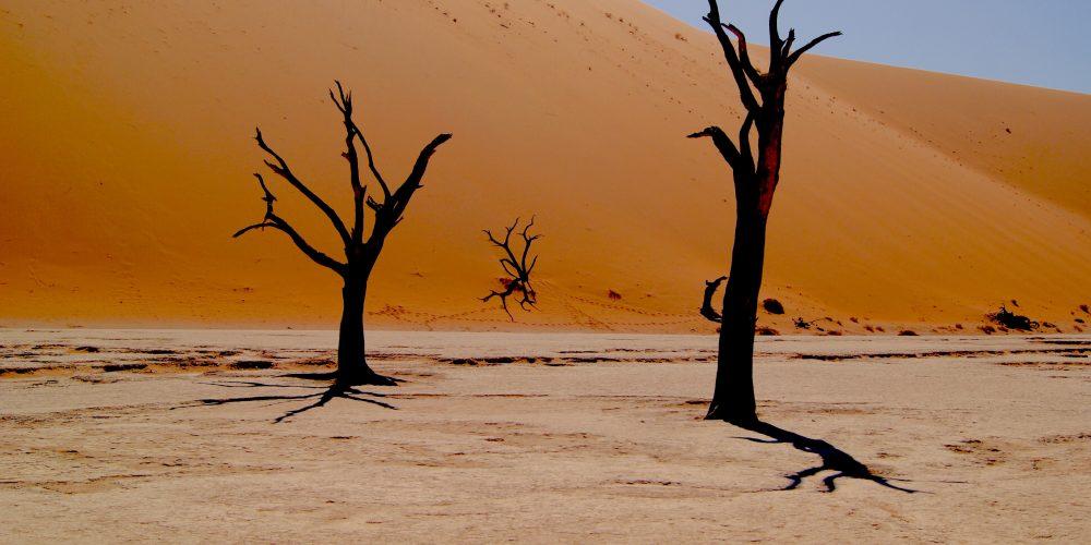Namibia wycieczki do południowej Afryki.