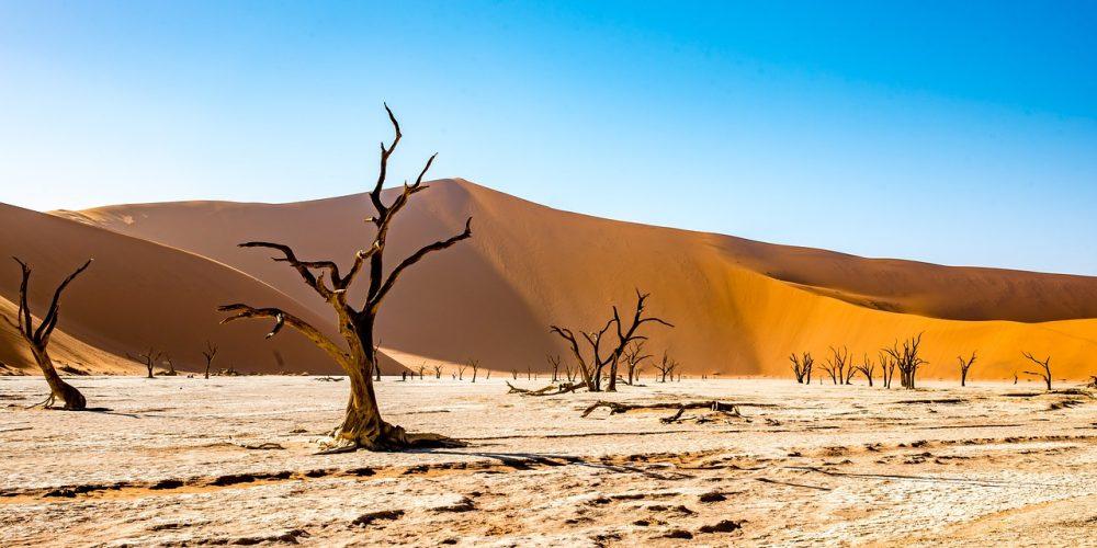 Namibia wyprawa do serca Afryki.